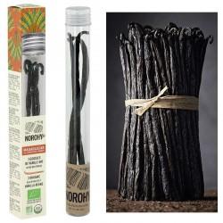 Vanilles de Madagascar BIO VALRHONA - tube de 3 gousses en stock