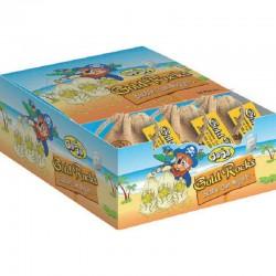 Bubble Gum Nuggets (pépites d'or) - boîte de 24