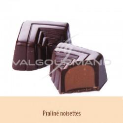 Chocolats noir au praliné pur - boîte de 1.100kg en stock