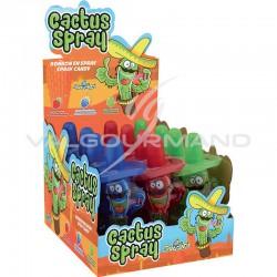 Cactus spray - boîte de 12