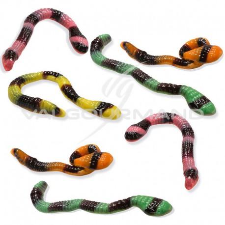 Serpents anacondas géants - 2kg