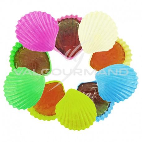 Coquillages lollycoque Roudoudou - Les 150