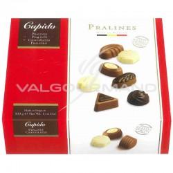 Ballotin sélection de chocolats belges praliné - 500g
