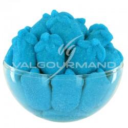 Framboises bleues aérées candies - 1kg