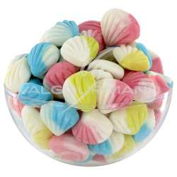 Palourdes mini couleur - 1kg en stock