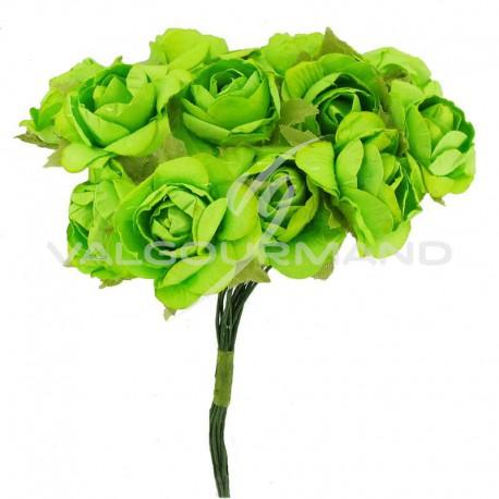 Bouquet de 12 roses VERT - le bouquet